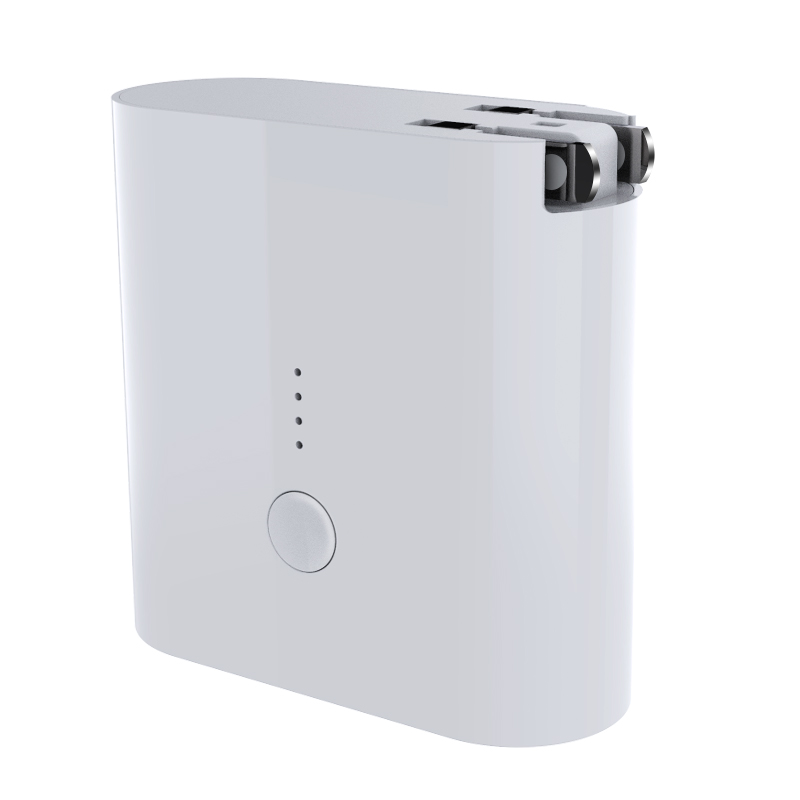 2 in1 Wall Charger & Power Bank